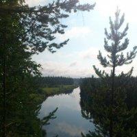 На реке Куреной, Печорский район. :: Кристина Виноградова
