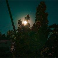 MOON LIGHT :: АЛЕКСЕЙ ФОТО МАСТЕРСКАЯ