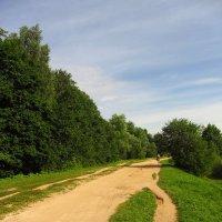 Дорожка вдоль пруда :: Андрей Лукьянов