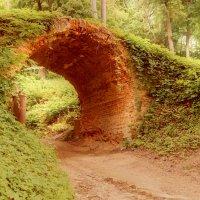 Арочный мостик :: Roman Globa
