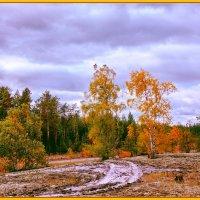 Уж небо осенью дышало... :: Алексей Хаустов