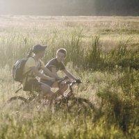 ride :: Trage