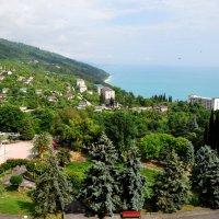 Виды Абхазии :: Дмитрий Айбазов