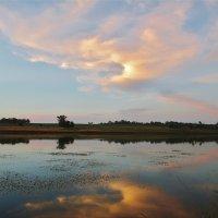 Облако Жар - Птица.. :: евгения