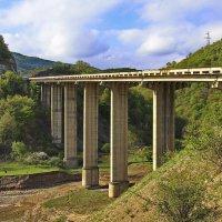 Мост над сухой речкой :: M Marikfoto