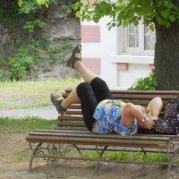 Утренняя зарядка поможет вам набраться силы и энергии на весь день. :: Галина