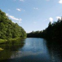 У озера :: Евгения Куприянова