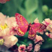 синтетическая бабочка :: Iulia Efremova