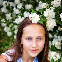 Жасмин :: Анастасия Ульянова