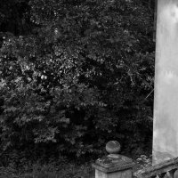 У разрушенной лестницы :: Женя Рыжов