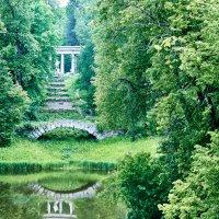 В Петергофском парке... :: Юрий Дмитриенко