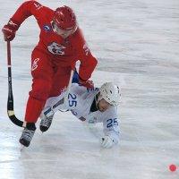 В пылу борьбы :: Андрей Горячев