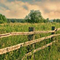 Ограда в никуда :: Дмитрий Конев