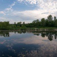 Зеркальное отражение :: Николай Алехин