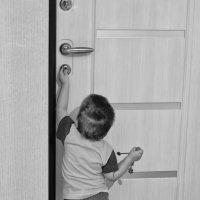 дверь в большой мир :: Маргарита Лапина