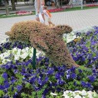 Цветочный дельфин :: Вера Щукина