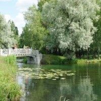 Один из мостиков с ажурной решеткой в районе Холодной ванны :: Елена Смолова