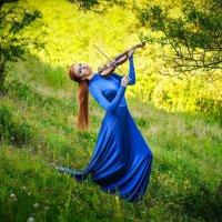 Скрипка-лиса :: Татьяна Гордеева
