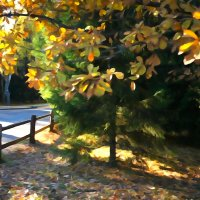 Осенние лучи солнышка :: Ксения Черных