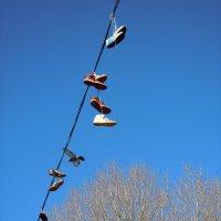 весна, ботинки прилетели.. :: Ольга Заметалова