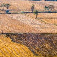 Fields and the sun. :: Илья В.