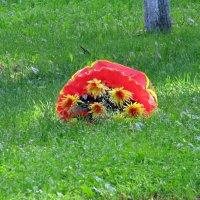 Цветы с зонтиком на траве :: Вера Щукина
