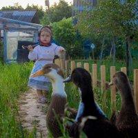 Лето в деревне :: Оля Пинчукова