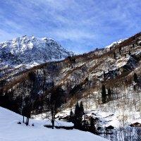 В Италии :: сергей адольфович