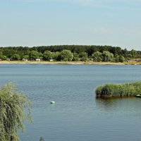Просторы реки Суры :: Лидия (naum.lidiya)