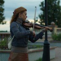 Вечерняя скрипка :: Николай Агапитов