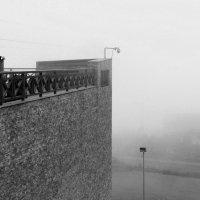 В тумане :: Людмила Быстрова
