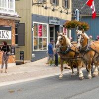 В одном из маленьких городков  Канады :: Alexander Hersonski