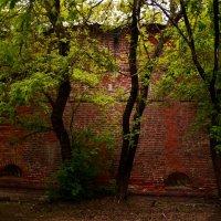 Ещё не руины :: Владимир Болдырев