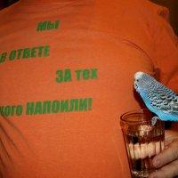 !!!!! :: Игорь Сикорский