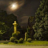 Ночь в парке :: Сергей Лошкарёв