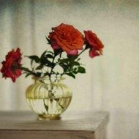 розы... :: Natali-C C