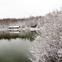 зима :: Анастасия Долгополова