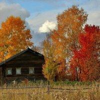 Осень в Тарасово. :: mike95