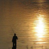 Рыбак :: Ирина Никитина