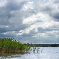 на озере :: Ольга Адаменко