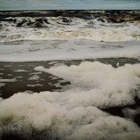 Холодное лето у Белого моря... :: Елена Третьякова