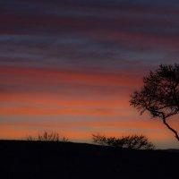 Закат на острове Ольхон :: Алексей Роплев
