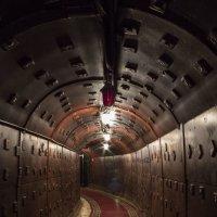Свет в конце тунеля :: Asya Dubova