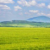 Вид на гору Машук :: M Marikfoto