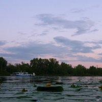 На закате :: Николай Алехин