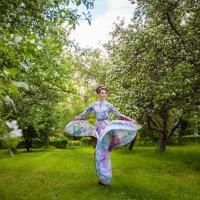 вечер в  яблоневом  саду :: Виктория Смелкова