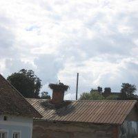 Аист на крыше. :: Любовь Зима