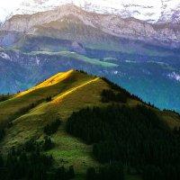 Альпийские виды :: Zifa Dimitrieva
