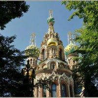 Собор Воскресения Христова :: Владимир Гилясев