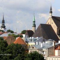 Fotostuudio Akolit, Tallinn, Arkadi Baranov :: Аркадий  Баранов Arkadi Baranov